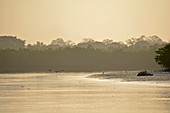 Gambia; Bintang bolong; The late afternoon sun bathes the river in yellowish light