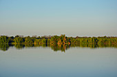Gambia; Central River Region; Gambia River near Kuntaur; View of the west bank and the Gambia River National Park