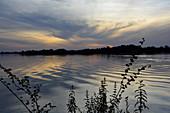 Gambia; Central River Region; Gambia-Fluss bei Kuntaur; nach Sonnenuntergang