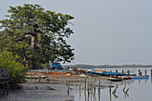 Gambia; at Bintang Bolong; Port in Bintang Village; Fishing boats on the shore; Bush taxi in the background is waiting for passengers