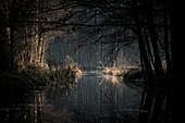Winterliche Flusslandschaft zum Sonnenaufgang im Spreewald, Deutschland, Brandenburg