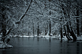 Snow river landscape at the blue hour in the Spreewald, Germany, Brandenburg, Spreewald