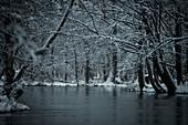 Snow river landscape at the blue hour in the Spreewald, Germany, Brandenburg, Spreewald