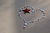 Seashells and a starfish laid out on the sand in from of a heart. Antigua, West Indies.