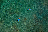 Two women floating on rubber floats in a clear blue ocean. Shot from the air. British Virgin Islands.