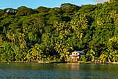 Coconut trees and house along Bora Bora Lagoon, Bora Bora, Leeward Islands, French Polynesia, South Pacific