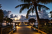 Coconut palms and boardwalk that leads to the overwater bungalows of the Sofitel Bora Bora Private Island Resort in the Bora Bora lagoon at daybreak, Bora Bora, Leeward Islands, French Polynesia, South Pacific