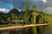 The picturesque Linareva Beach Resort with trees, rainbows and mountains, Teniutaoto, Moorea, Windward Islands, French Polynesia, South Pacific