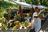 A young woman with fruit and vegetables for sale at a roadside market stall, Apootaata, Moorea, Windward Islands, French Polynesia, South Pacific