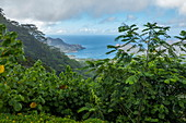 View of lush vegetation and Taiohae Bay, near Taiohae, Nuku Hiva, Marquesas Islands, French Polynesia, South Pacific