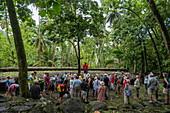 Guide from the passenger cargo ship Aranui 5 (Aranui Cruises) explains stone tikis, sacred ritual sites (me'ae) and huge stone platforms (paepae) at the Kamuihai archaeological site in the Taipivai Valley, near Taipivai, Nuku Hiva, Marquesas Islands, French Polynesia, South Pacific