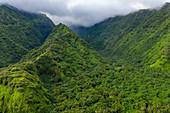 Luftaufnahme des üppigen Dschungels und der Berge an der Südwestküste von Tahiti-Iti, Maraotiria, Tahiti, Windward Islands, Französisch-Polynesien, Südpazifik
