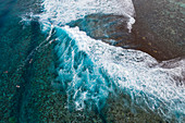 Aerial view of surfers on wave on reef, Nuuroa, Tahiti, Windward Islands, French Polynesia, South Pacific