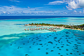 Aerial view of the InterContinental Le Moana Bora Bora Resort with overwater bungalows in the lagoon of Bora Bora, Vaitape, Bora Bora, Leeward Islands, French Polynesia, South Pacific