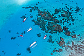 Aerial view of tour boats on snorkeling trips in the Bora Bora Lagoon, Vaitape, Bora Bora, Leeward Islands, French Polynesia, South Pacific
