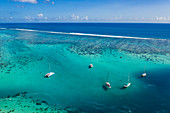 Aerial view of moored sailboats in the Moorea Lagoon, Apootaata, Moorea, Windward Islands, French Polynesia, South Pacific