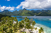 Aerial view of coconut trees on Opunohu Bay beach with cruise ship MS Astor (Transocean Cruises) in the distance, Moorea, Windward Islands, French Polynesia, South Pacific
