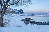 Ufer nähe Fischerdorf Reine auf Lofoten Inseln am Abend, Reine, Norwegen