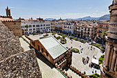 On the roof of the Maria Santissima Assunta Cathedral, Palermo, Sicily, Italy