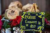 Sale sign for fresh coconut at Malamala Island Beach Club, Mala Mala Island, Mamanuca Group, Fiji Islands, South Pacific
