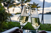 Toasting with two glasses of champagne in a residence villa in the Six Senses Fiji Resort, Malolo Island, Mamanuca Group, Fiji Islands, South Pacific