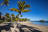 Coconut trees and beach at Six Senses Fiji Resort, Malolo Island, Mamanuca Group, Fiji Islands, South Pacific