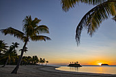 Coconut palm, beach and small barrier island at Six Senses Fiji Resort at sunset, Malolo Island, Mamanuca Group, Fiji Islands, South Pacific