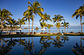 Reflection of coconut trees in the swimming pool of Six Senses Fiji Resort, Malolo Island, Mamanuca Group, Fiji Islands, South Pacific