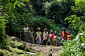 Group of women in colorful clothes on path in Cyamudongo Forest, Nyungwe Forest National Park, Western Province, Rwanda, Africa