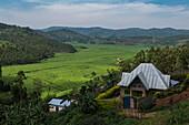 Haus mit Blick auf Teeplantage und Berge, nahe Gisakura, Western Province, Ruanda, Afrika