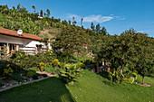 Gardens and rooms of the Rushel Lodge on the banks of Lake Kivu, Kinunu, Western Province, Rwanda, Africa