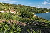 Lush gardens along the shores of Lake Kivu with Rushel Lodge in the distance, Kinunu, Western Province, Rwanda, Africa