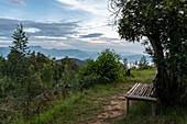 Bench with a view at Virunga Lodge, near Kinyababa, Northern Province, Rwanda, Africa