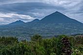 View of volcanoes seen from the Virunga Lodge, near Kinyababa, Northern Province, Rwanda, Africa