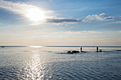 Silhouette of two fishermen and dogs standing on rocks in the water in front of Ong Lang Beach, Ong Lang, Phu Quoc Island, Kien Giang, Vietnam, Asia