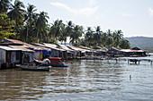 Schwimmende Häuser und Kokospalmen an der Küste, Rach Vem, Insel Phu Quoc, Kien Giang, Vietnam, Asien