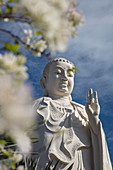 Giant Buddha statue at the Vinh Trang Pagoda, My Tho, Tien Giang, Vietnam, Asia