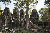 Visitors stroll between the Ta Prohm temple, which is slowly being devoured by trees, Angkor Wat, near Siem Reap, Siem Reap Province, Cambodia, Asia