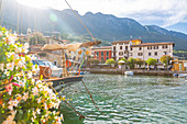 View of harbour and architecture on a sunny day, Malcesine, Province of Verona, Veneto, Italian Lakes, Italy, Europe