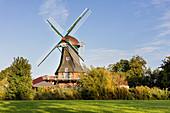 Sielmühle zu Westerbur im Abendlicht, Windmühle, Westerbur, Ostfriesland, Niedersachsen, Deutschland