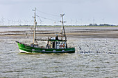 Fishing boat catching, fishing trawler, seagulls, North Sea, Langeoog, East Frisia, Lower Saxony, Germany