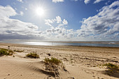 Beach in bright sun, dune, sea, clouds, sand, shallow water, sand bank, North Sea, Langeoog, East Frisia, Lower Saxony, Germany