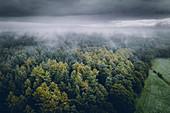 Wald und Feld unter Nebel und Wolken, Luftaufnahme, Wiesede, Friedeburg, Wittmund, Ostfriesland, Niedersachsen, Deutschland, Europa