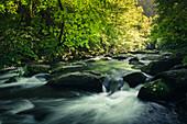 River Bode, Bodetal, Thale, Harz, Saxony-Anhalt, Germany, Europe