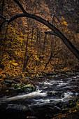 Fluss Bode, Bodetal, Thale, Harz, Sachsen-Anhalt, Deutschland, Europa