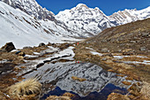 Just before Annapurna Base Camp, Nepal, Himalayas, Asia.