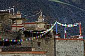 Prayer flags adorn the village of Phu, Nepal, Himalayas, Asia.