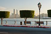 trimmed trees, skyscrapers, Abu Dhabi, United Arab Emirates