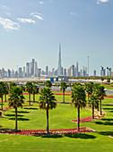 Skyline, green WIese, palm trees, flowers, Dubai, United Arab Emirates