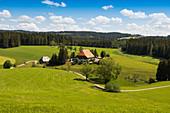 Alter Schwarzwaldhof, Unterfallengrundhof, near Gütenbach, Black Forest, Baden-Württemberg, Germany